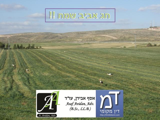 """חג שמח - אסף אבידן, עו""""ד, דין מקומי"""